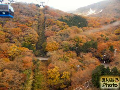 箱根ロープウェイから見た紅葉