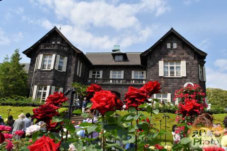 旧古河庭園「春のバラフェスティバル」