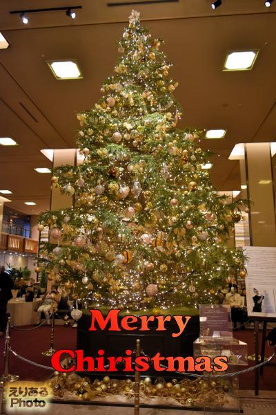 2016年の帝国ホテルのクリスマスツリー